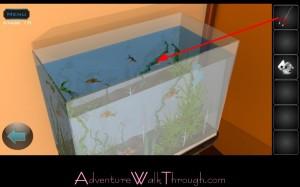 Lets Escape Stage10 Fish Tank